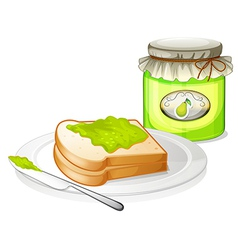 A bread with avocado jam vector