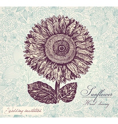Sunflower invitation background vector
