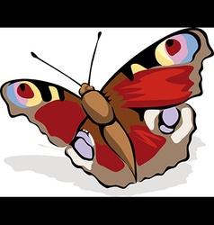 Butterfly peacock eye vector