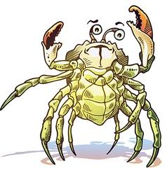Sea crab vector
