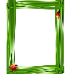 Grass frame with ladybugs vector