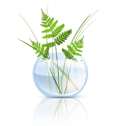Grass and fern vector