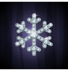 Jewel snow silver vector