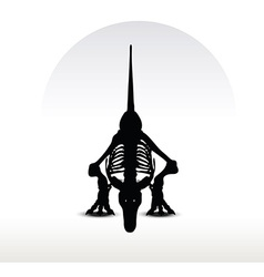 Dinosaurs trex skeleton vector