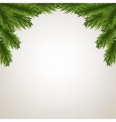 Fir tree branches frame vector