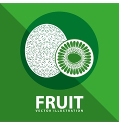 Fruit icon vector