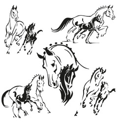 Mares and foals 2 vector