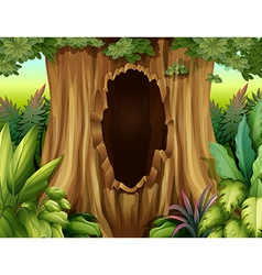 A hole in a big tree vector