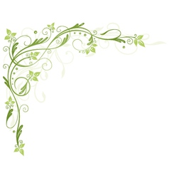 Leaves tendril spring vector