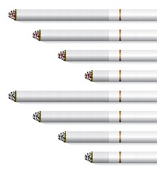 Cigarettes - white filter vector