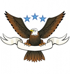 Bald eagle insignia vector