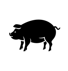 Contour of pig vector