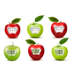 Set of apples with weight scales diet concept vector