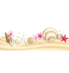 Seashell header vector