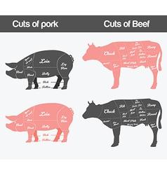 Beef pig vector