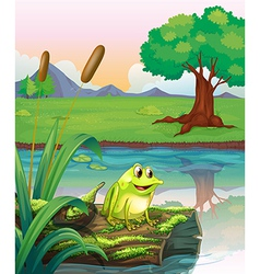 A frog above a trunk with algae vector
