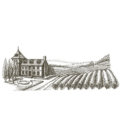 Vineyard logo design template village or vector