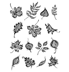 Set of vintage leaves vector