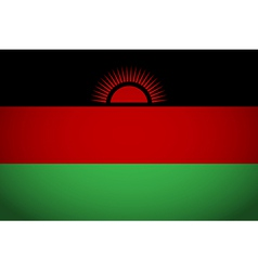 Flag of malawi vector