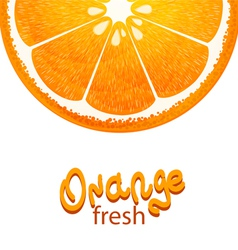 With half of orange on white background vector