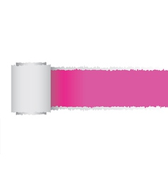Torn paper roll vector