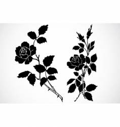 Rose stem ornaments vector