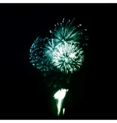 Fireworks in the night sky vector
