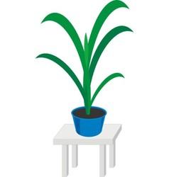 Home plants in pot vector