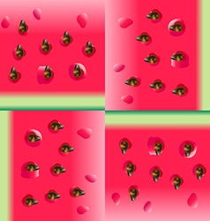 Watermelon portion background vector