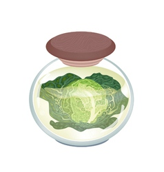 A jar of delicious pickled savoy cabbage vector