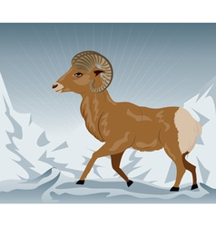 Wild ram in the mountains2 vector