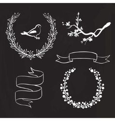 Hand drawn spring graphic set on blackboard vector