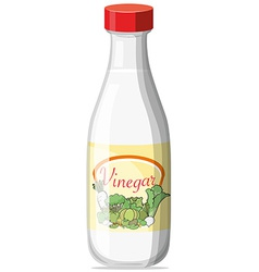 Vinegar vector