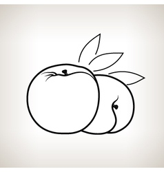 Peach in the contours vector