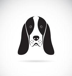 Image of an basset hound head vector