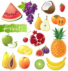 Great fruits set vector