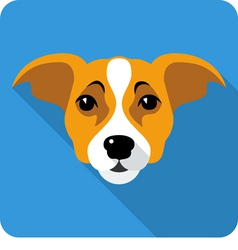Dog jack russell terrier icon flat design vector