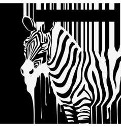 Dripping zebra silhouette vector