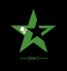 Green grass star with flowers design element vector