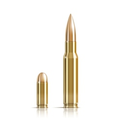 Ammunition bullets on white vector