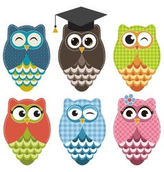 Set with owls vector