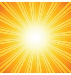 Sunburst backgrounds vector