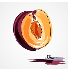 Plum piece vector