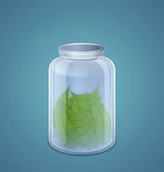 Mint leaves in the pot vector