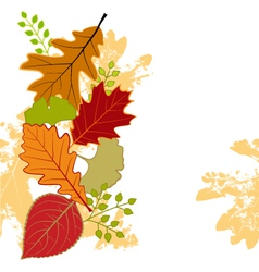 Abstract colorful autumn leaf vector