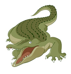 Crocodile vector