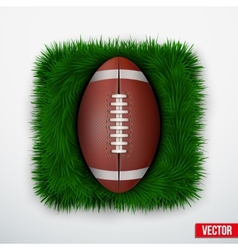 Icon american football ball in green grass vector