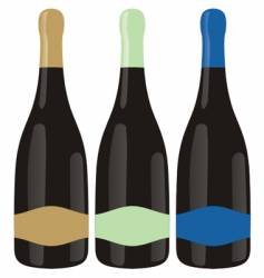 Champagne bottles set vector