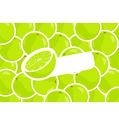 Ripe lime vector