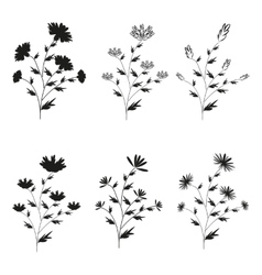 A set of six black hand-drawn flowers on isolated vector